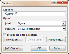 Caption dialog box