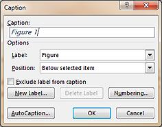 Caption dialog box
